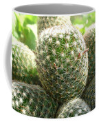 Pincushion Cactus Coffee Mug
