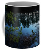 Pine Barren Reflections Coffee Mug