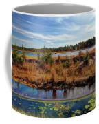 Pine Barrens Bog In New Jersey Coffee Mug