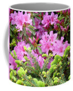 Pine Conifer Pink Azaleas 30 Summer Azalea Flowers Giclee Art Prints Baslee Troutman Coffee Mug