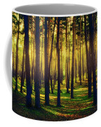 Pine Forest In La Boca Del Asno-segovia-spain Coffee Mug
