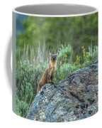 Pine Marten With Attitude Coffee Mug