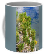 Pine Needles Over Water Coffee Mug