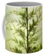 Pine Shower Coffee Mug