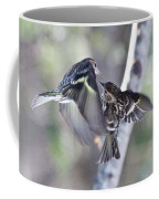 Pine Siskins Fighting 6829 Coffee Mug