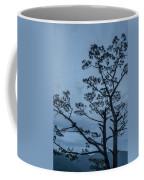 Pine Tree Antigua Guatemala Coffee Mug