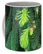 Pine Tree Branches Art Prints Conifer Forest Baslee Troutman Coffee Mug