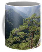 Pine Tree On Mountain Landscape Coffee Mug