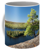 Pine Tree With A View Coffee Mug
