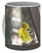 Pine Warbler Coffee Mug