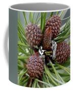 Pinecone Rock 1 Coffee Mug