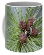 Pinecone Tull Coffee Mug