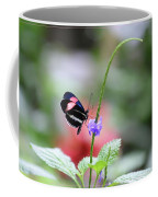 Pink And Blue Butterfly Coffee Mug