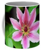 Pink And White Clematis Coffee Mug