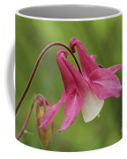 Pink And White Columbine Coffee Mug