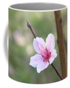 Pink And White Nectarine Blossom Coffee Mug