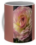 Pink And White Ranunculus Coffee Mug
