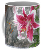 Pink And White Stargazer Lily In A Garden Coffee Mug