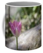 Pink And White Tulip 02 Coffee Mug