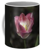 Pink And White Tulip Squared 2 Coffee Mug