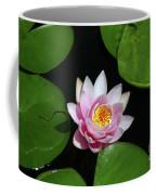 Pink And Yellow Lotus Waterlily Coffee Mug