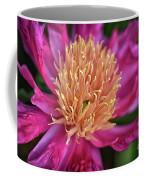 Pink And Yellow Peony Coffee Mug