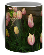 Pink And Yellow Tulips Coffee Mug