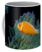 Pink Anemonefish Coffee Mug