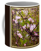 Pink Aplle Blossoms Of Spring Time Coffee Mug
