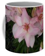 Pink Asiatic Lilies 1 Coffee Mug