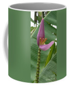 Pink Banana Flower Coffee Mug