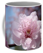 Pink Blossom Nature Art Prints 34 Tree Blossoms Spring Nature Art Coffee Mug