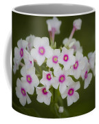 Pink Bright Eyes Garden Phlox Coffee Mug