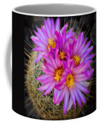 Pink Cactus Flowers Square  Coffee Mug