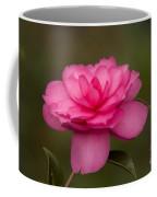 Pink Camellia 3 Coffee Mug