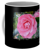 Pink Camellias With Fence And Framing Coffee Mug