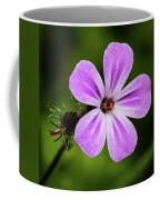 Pink Campion Coffee Mug