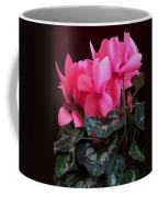 Pink Cyclamen 1 Coffee Mug