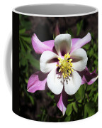 Pink Columbine Coffee Mug