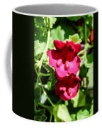 Pink Creeping Gloxinia Coffee Mug