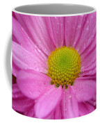 Pink Daisy With Raindrops Coffee Mug