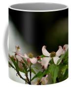 New Orleans Pink Dogwood Equinox Coffee Mug