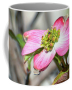 Pink Dogwood Coffee Mug by Kerri Farley