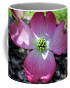 Pink Dogwood Coffee Mug