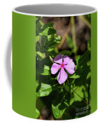 Pink Downy Phlox Wildflower Coffee Mug