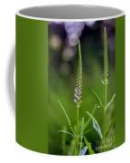 Pink Dragon Flowers Coffee Mug