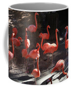 Pink Flamingos  Coffee Mug