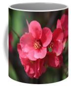 Pink Flowering Quince Coffee Mug