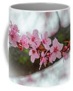 Pink Flowering Tree - Crabapple With Drops Coffee Mug