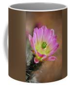 Pink Hedgehog Cactus Coffee Mug